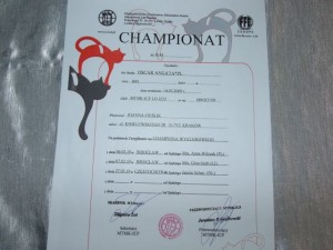 champion oscar